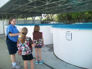 Girl scouts and keeper standing by sea turtle tank