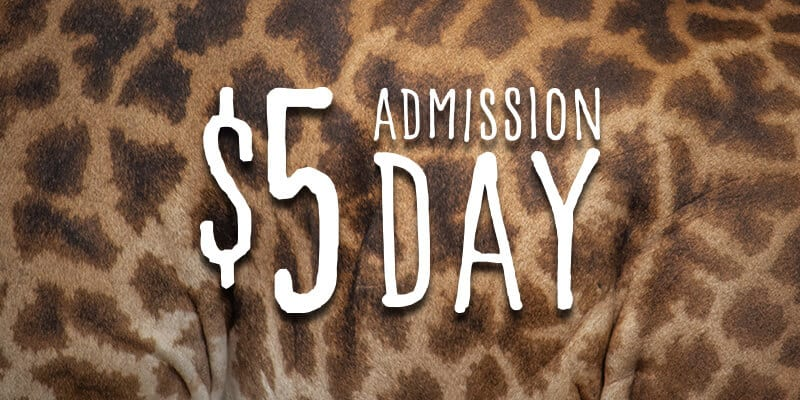 $5 ADMISSION DAY