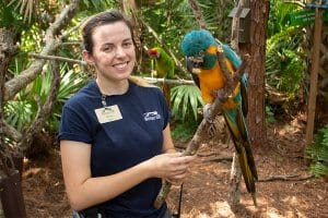 Zookeeper Alyssa with macaws