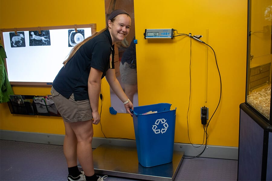 Zoo staff weighs recycling