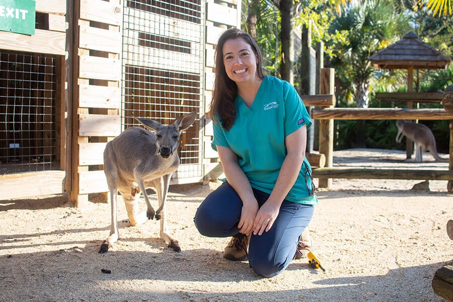 Veterinarian Kyle Donnelly poses next to a kangaroo
