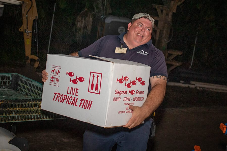 "A man in a blue shirt carries a white box labeled ""LIVE TROPICAL FISH"""