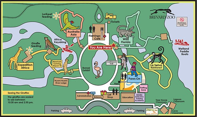 jacksonville zoo map bnhspinecom