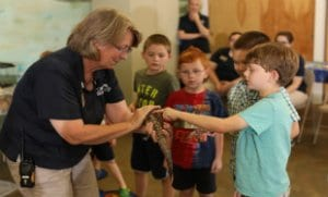 Education specialist introducing children to animal