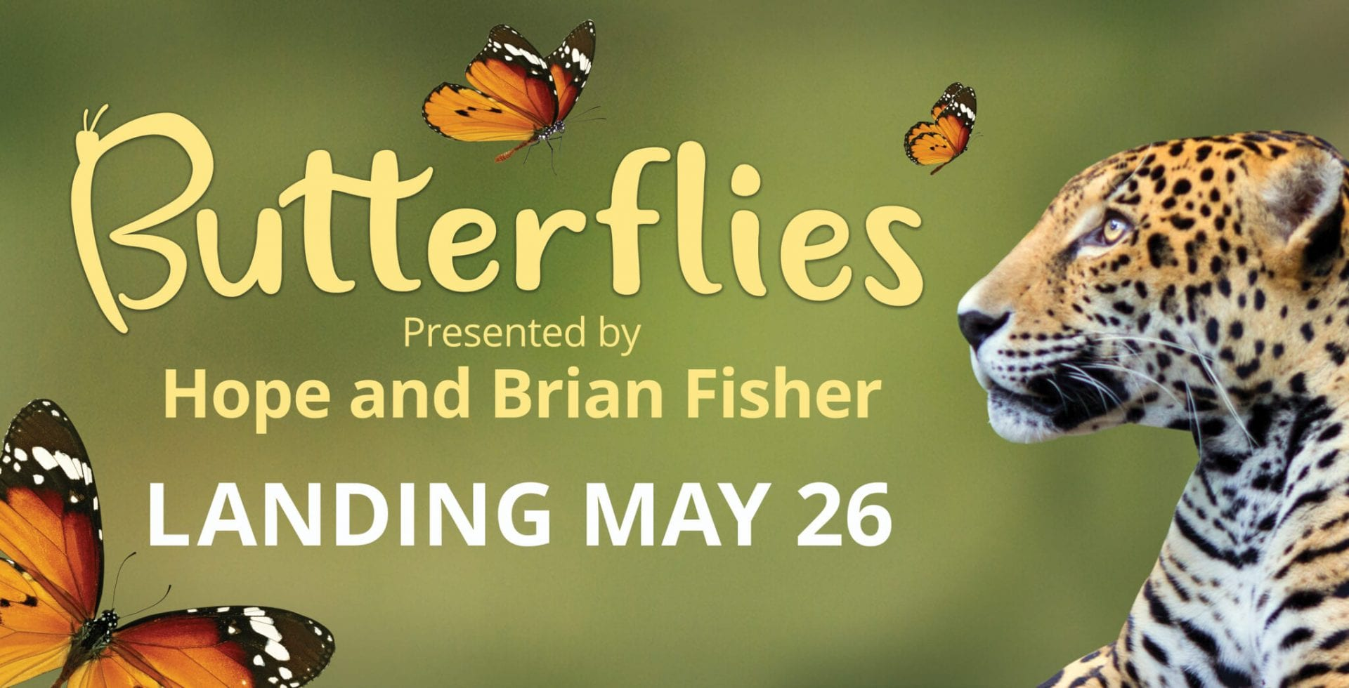 Advertisement for Butterfly exhibit 2018