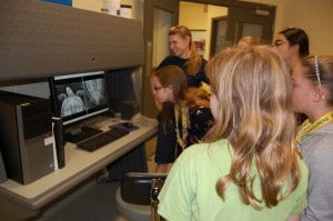 Students looking at sea turtle x-ray