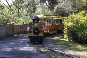 Front view of Zoo train