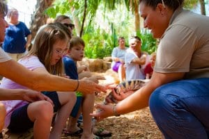 Educator introducing children to a turtle