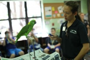 Brevard Zoo Summer Camp - Earth Explorers How do professionals care for wildlife? Travel with us as we network with different animal-based facilities learning about varying methods of animal care and conservation.
