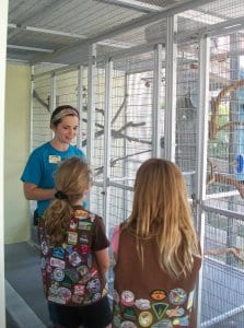 Teen volunteer showing birds to girl scouts