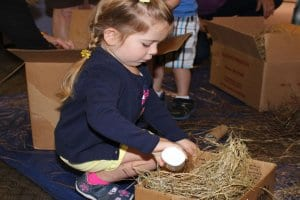 Girl putting a toy egg in a bird nest