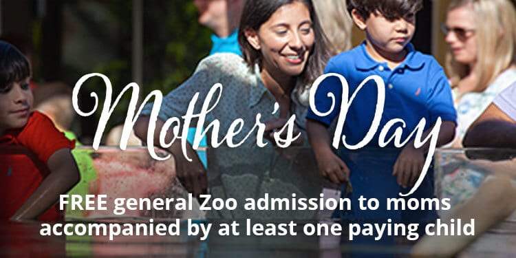 Mother's Day Free Zoo admission