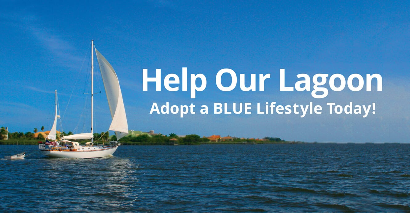Help Our Lagoon