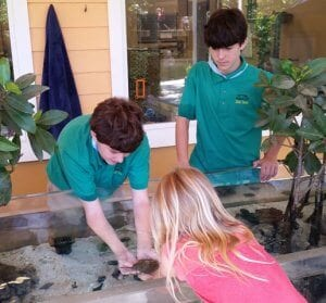Zoo teens showing guests animals in the touch tank