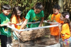Children in camp building animal home