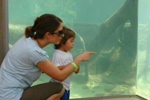 Lady and child looking into aquarium
