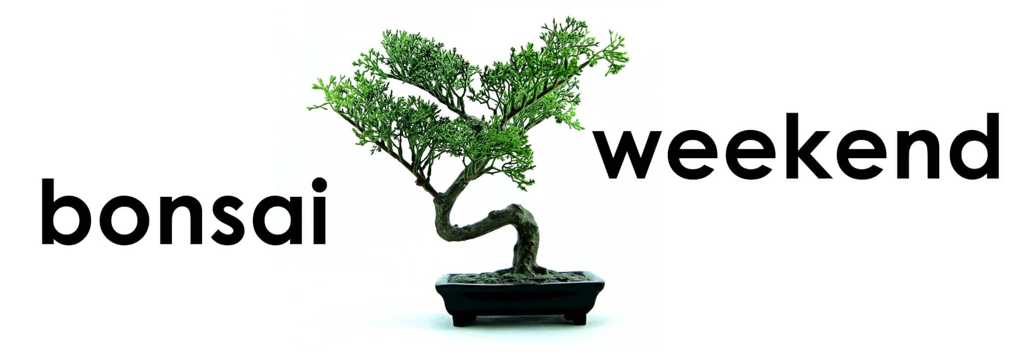 Bonsai Weekend logo
