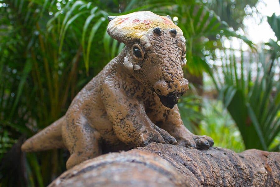 Dinosaur hatchling