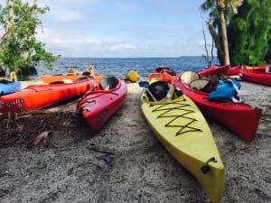 Kayaks on shore