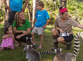 Guests on Lemur Island