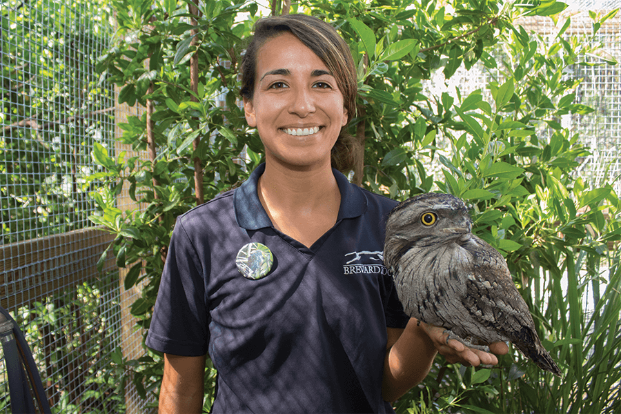 Michelle and tawny frogmouth