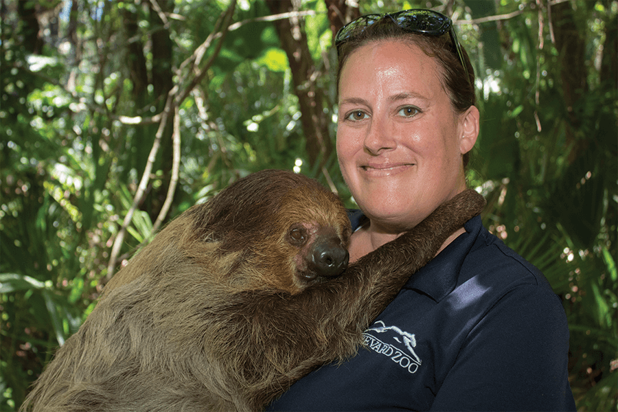 Nikki and a two-toed sloth