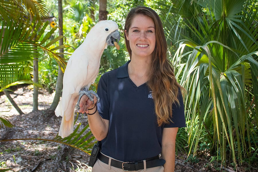 Keeper Sam with salmon-crested cockatoo
