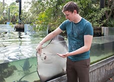 Zoo guest feeding a stingray at Brevard Zoo