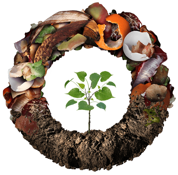 compost life cycle for sustainability