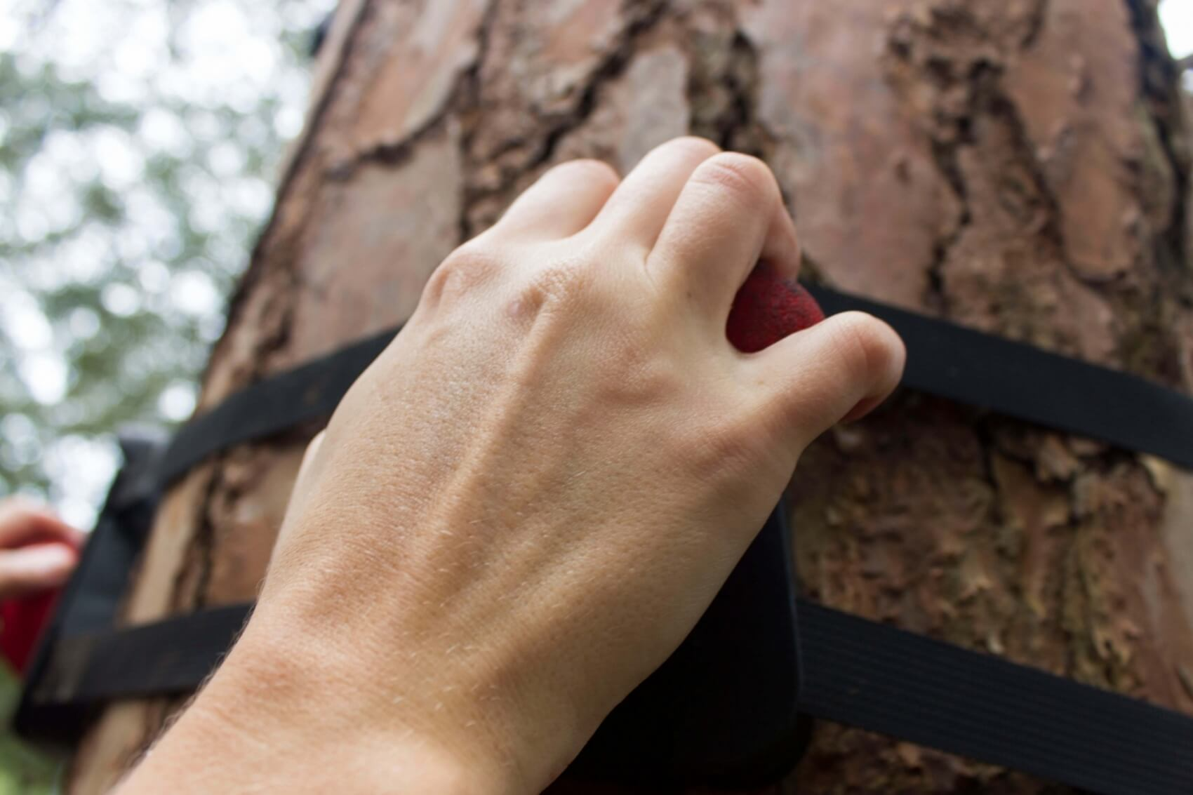 Hands gripping tree hugger