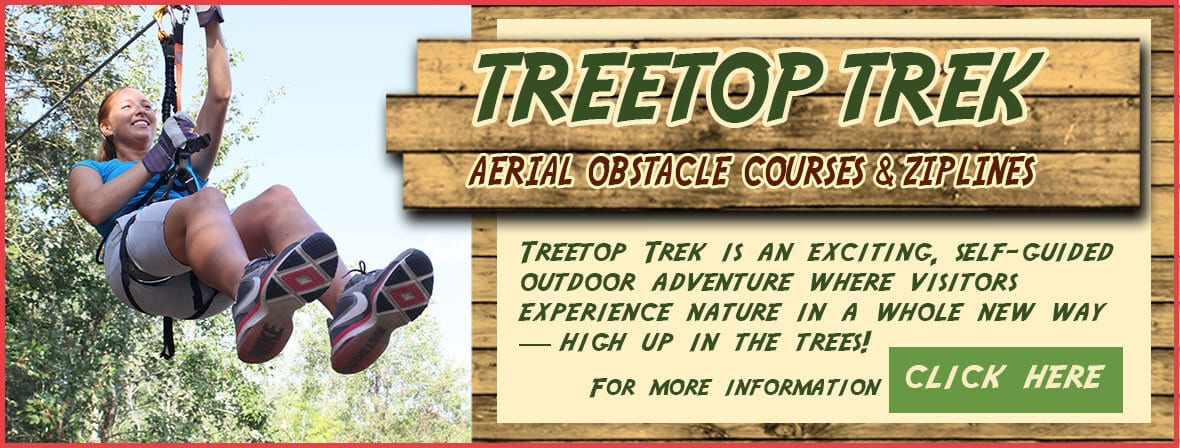 Banner ad for Treetop Trek
