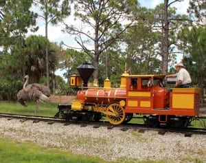 Train by ostrich habitat
